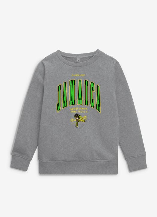 Junior Sweatshirt Grey Marle